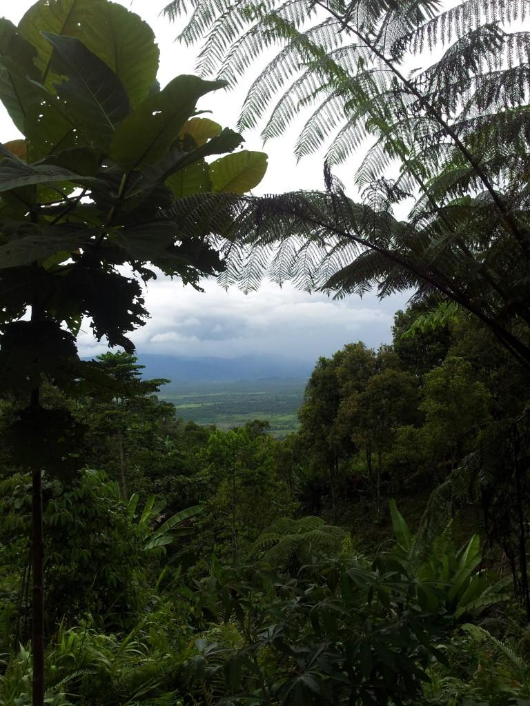 Pemandangan dari atas Desa Lampasio, Tolitoli